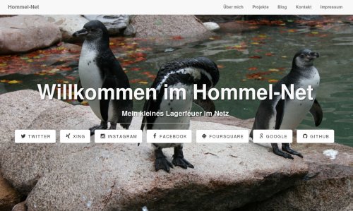 Screenshot hommel-net